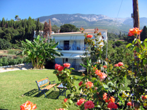 THOMATOS APARTMENTS  HOTELS IN  Lourdas Beach / Lourdata KEFALONIA IONIAN ISLANDS