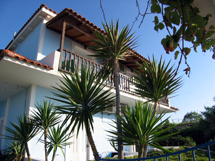 THOMATOS APARTMENTS  HOTELS IN  Fanari KEFALONIA IONIAN ISLANDS